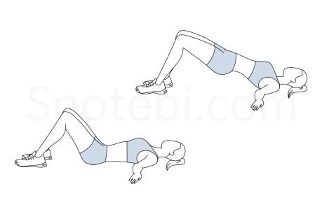 glute-bridge-exercise-illustration